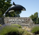 The Marina, Oak Bay, Victoria BC
